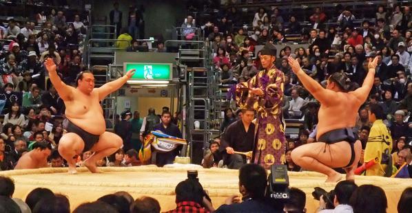 20141119 稀勢の里ー鶴竜 相撲協会公式
