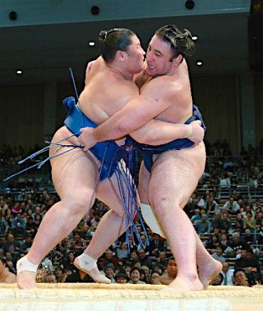 20141121 逸ノ城ー栃ノ心 時事