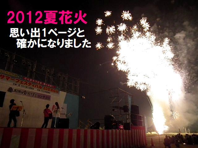 サマフェス2012 のむら (17)