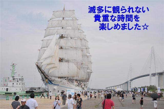 共演 (4)