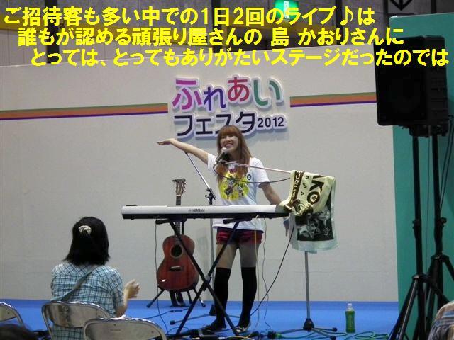 ふれあいフェスタ2012 (10)