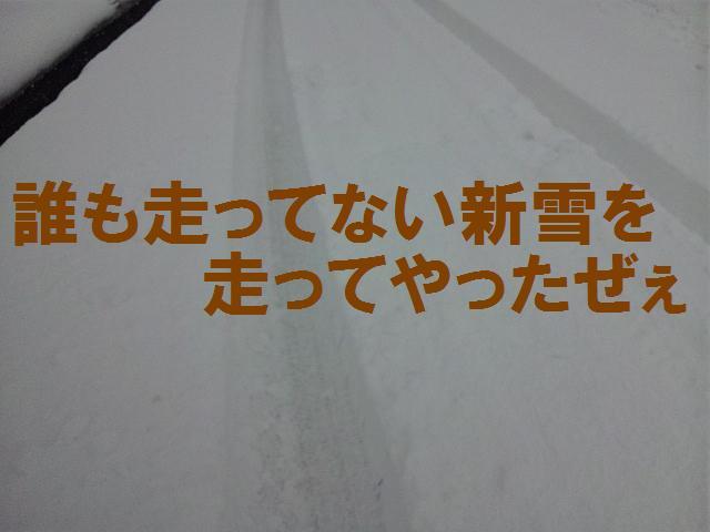 ワイルドだぜぇ (3)