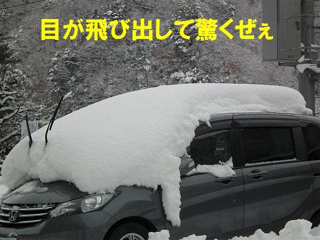 ワイルドだぜぇ (6)