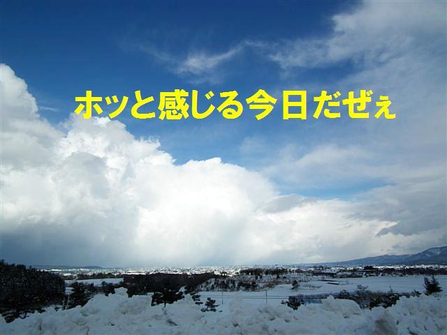 ワイルドだぜぇ (12)