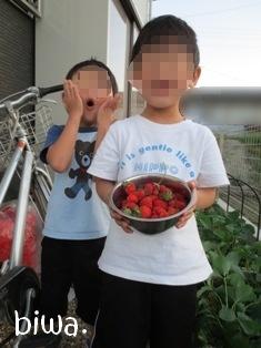 イチゴと共に♪
