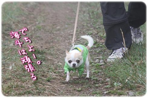 113_20120612195108.jpg