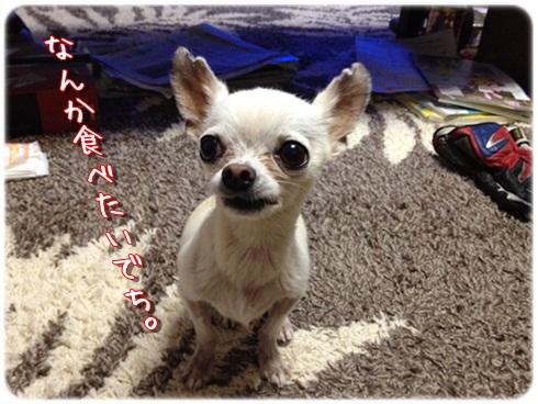 IMG_1759_20120711213644.jpg