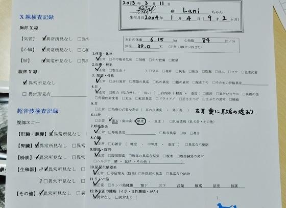 DSC_0694_20130312213908.jpg