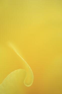 045-154-01.jpg