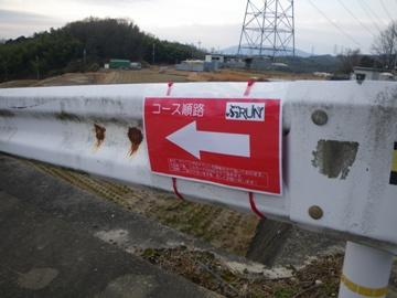 IMGP4568.jpg