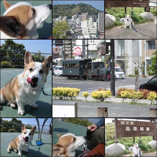 松山 市街