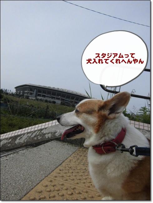 2013年6月から ブログ用0012