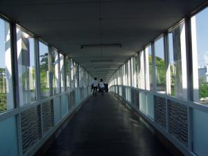 mikimoto1_convert_20120506103424.jpg