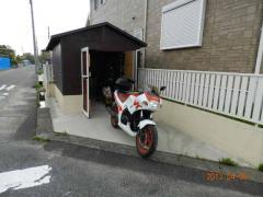4.09 薄墨桜 038