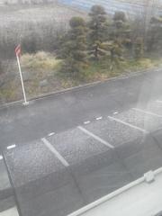 1228 初雪
