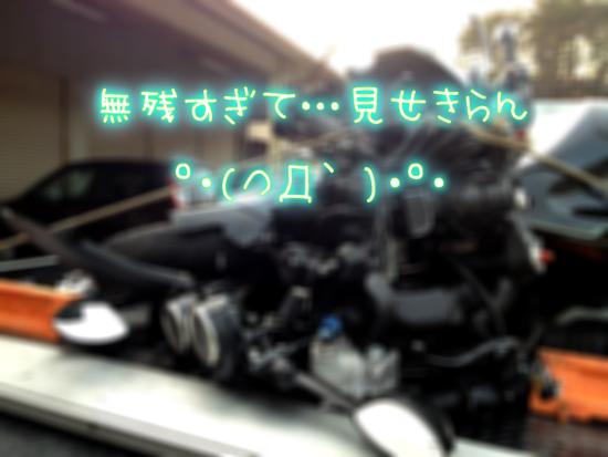 写真-2013-03-03-17-39-23