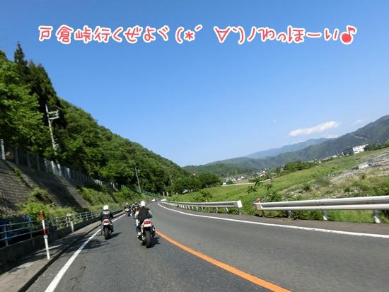 CIMG0065_20130517112305.jpg