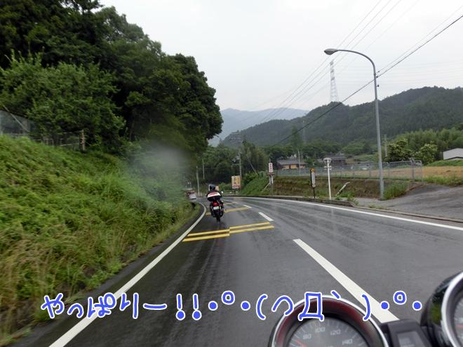 CIMG0930.jpg