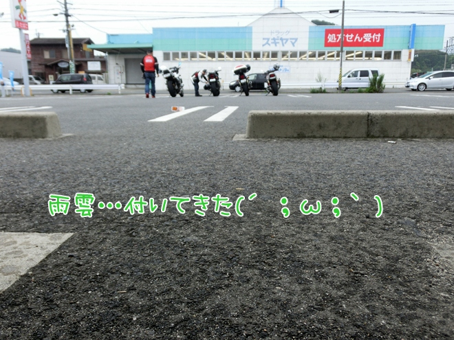 CIMG0942.jpg
