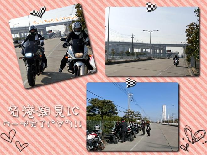 CIMG8446.jpg
