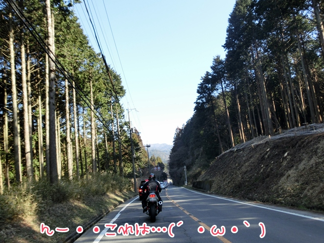 CIMG8801.jpg