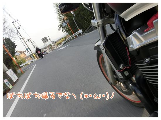 CIMG8880.jpg