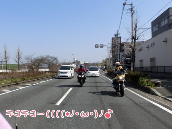 CIMG8891.jpg
