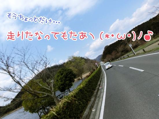 CIMG9096.jpg