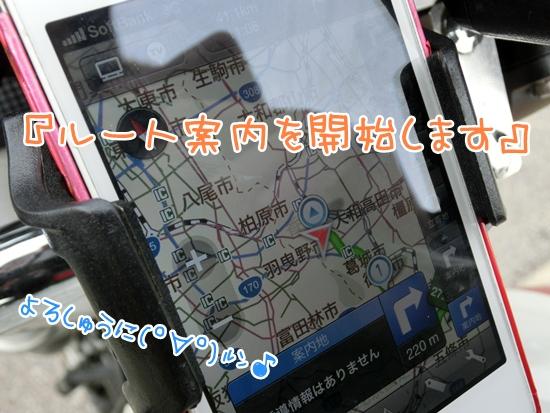 CIMG9229.jpg