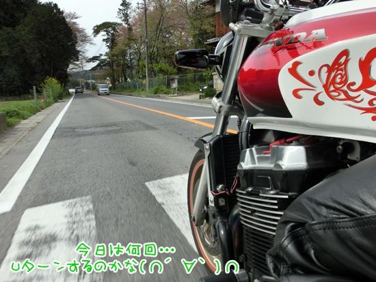 CIMG9238.jpg