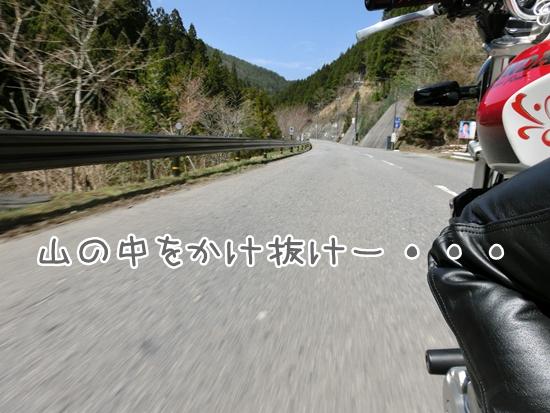 CIMG9318.jpg