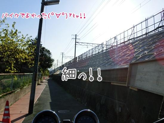 CIMG9359.jpg
