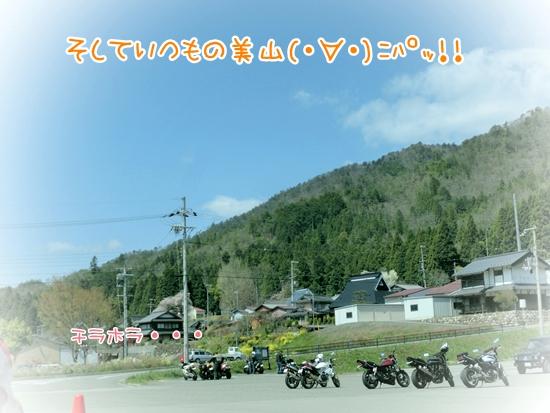CIMG9378.jpg