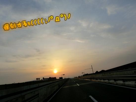 CIMG9428.jpg