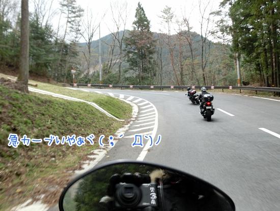 CIMG9480.jpg