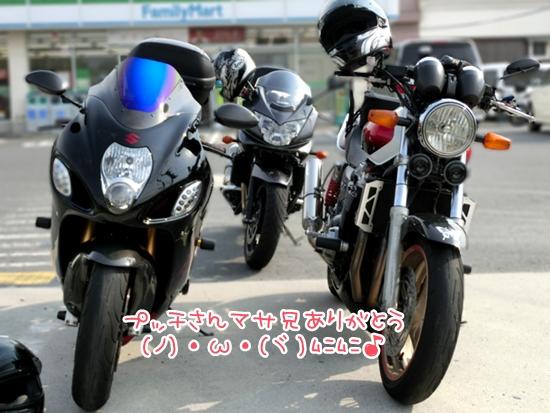 CIMG9511.jpg