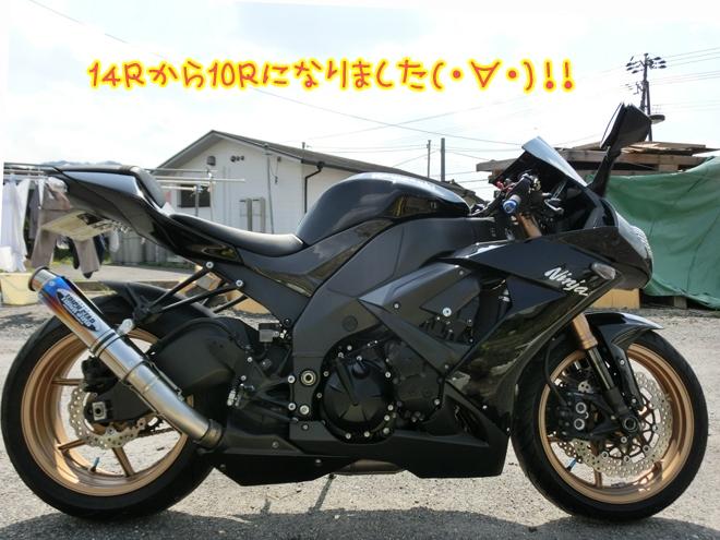 CIMG9535.jpg