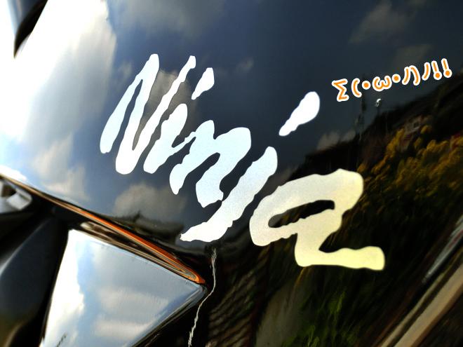 CIMG9537.jpg