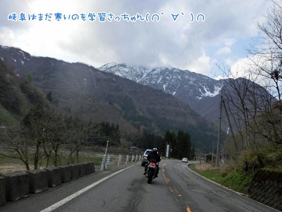 CIMG9680.jpg