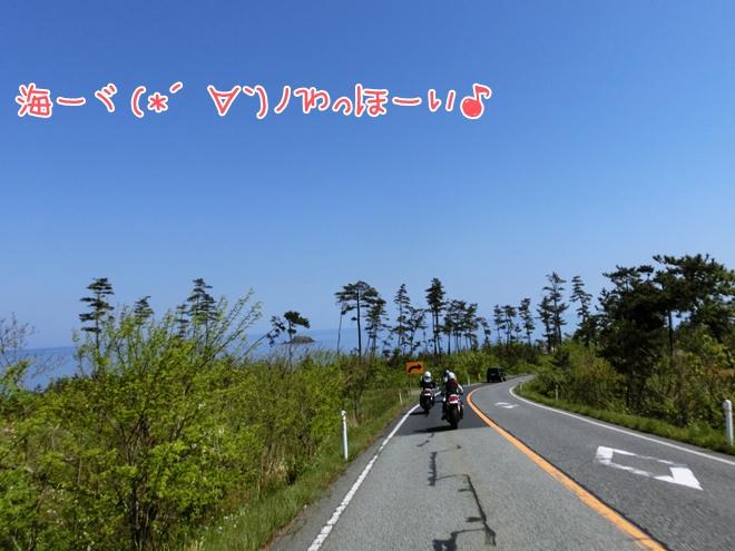CIMG9956.jpg