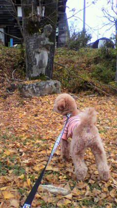 2011-11-18 デイジーさん付近散策 二ノ宮金次郎に吼える