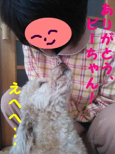 DSC_0958-1.jpg