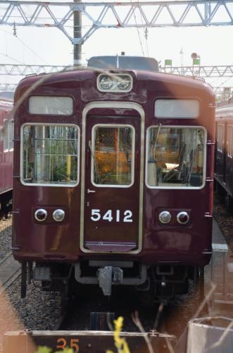 DSC_6621_convert_20120602201707.jpg