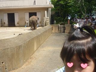 金沢動物園3