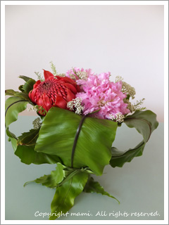 flower20120428_2.jpg