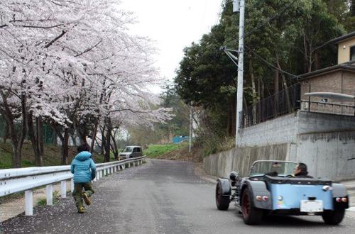 sakuradoujou2.jpg