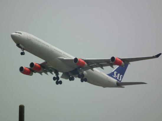 A343_SK.jpg