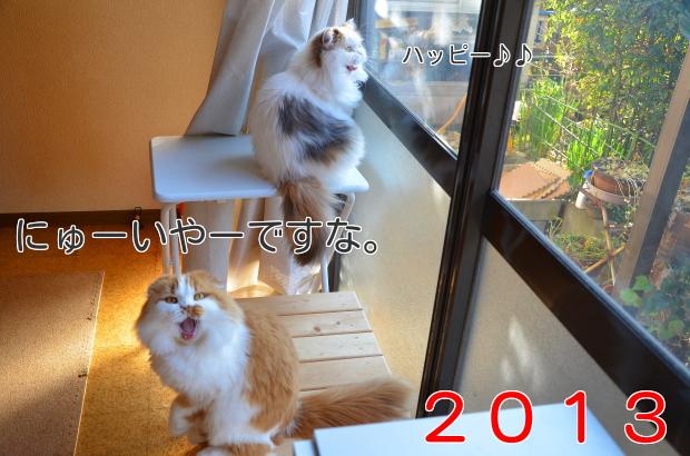 20132.jpg
