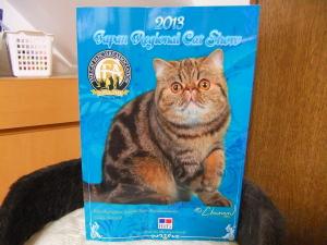 2013_0116catshow200122.jpg