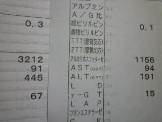 P1080068.jpg